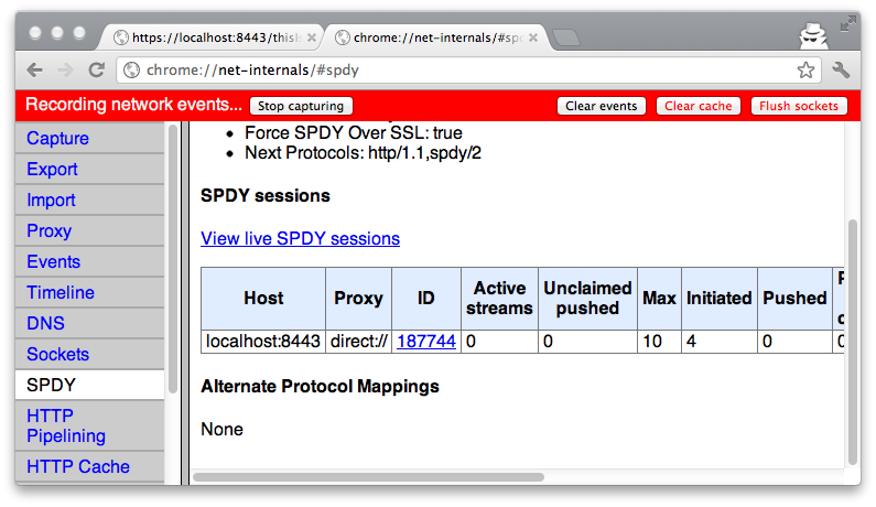 Chrome spdy sessions